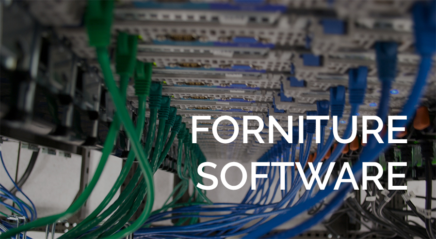 fornitura software